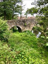 bridge over Rio Furelos DMS: by donna_jeff, Views[42]