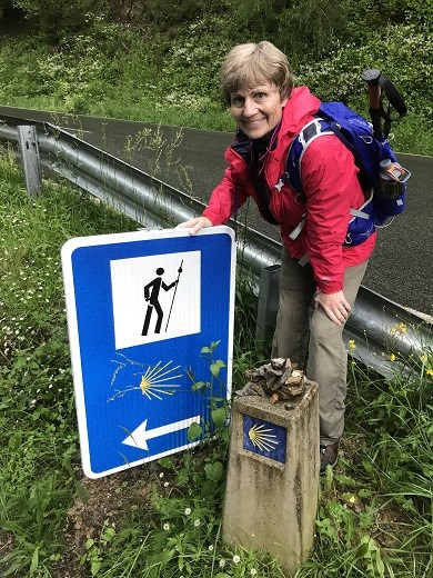 Pyrenees Camino Sign DMS