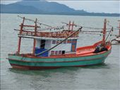 squid boats: by drea72, Views[263]