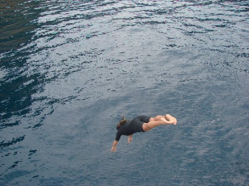 diving off of boat