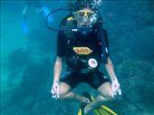 om under water: by drea72, Views[698]