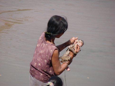 monkey washing time...