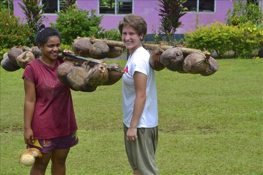 Collecting Coconuts for Coconut Milk
