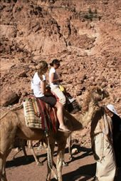 The girls soon discovered this wasn't necessarily the safest way up though - as certain camels tried to commit suicide by running towards the edges of a cliff: by drmitch, Views[137]
