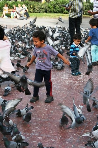 These kids were having a great time playing with the flying rats