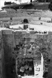 Roman Amphitheatre - the reason I came to Tarragona: by drmitch, Views[213]
