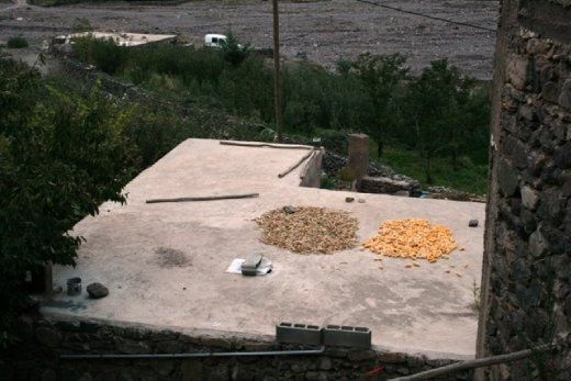 Drying corn on the roof