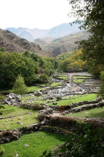 From the brown of the hills to THIS - green valleys with year-round water supply