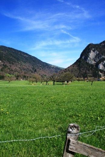 Cycling through the Swiss farmland
