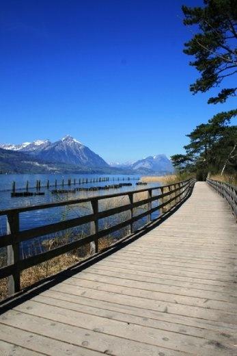 Walking along the easterly lake - Lake Brienze