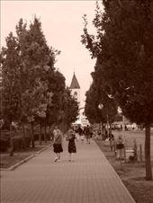 by dushafotografa, Views[123]