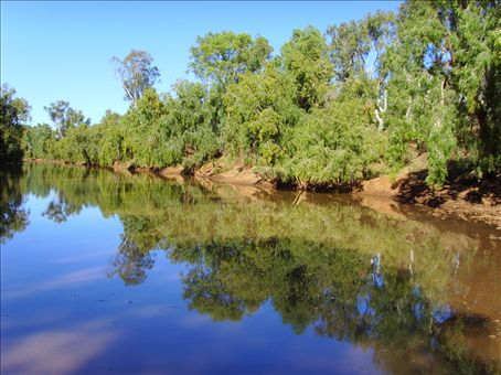 A waterhole on the Leichard River at Gleeson Station.