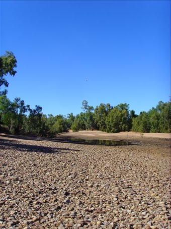 Another picture of the dry riverbed at Gleeson Station.