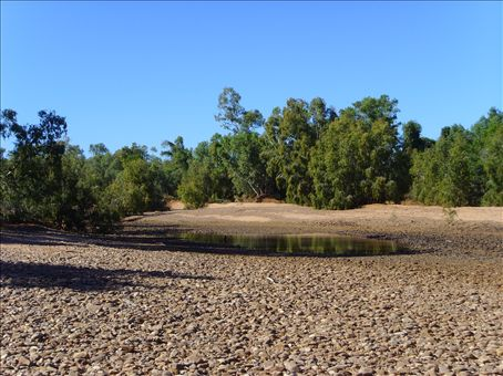 The dry rivebed at Gleeson Station.  This is the Leichard River.