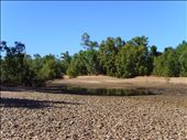 The dry rivebed at Gleeson Station.  This is the Leichard River.: by edinoz, Views[701]