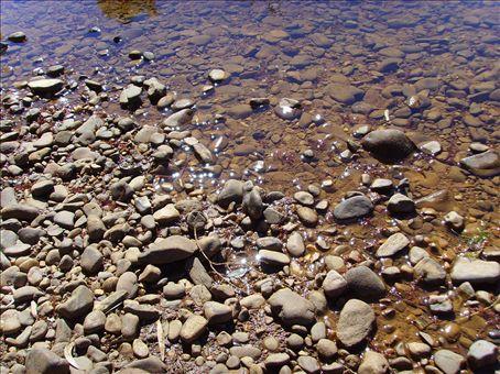 Pebbles in the river.  Gleeson Stn.