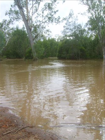 The river in flood on the property in Marlborough