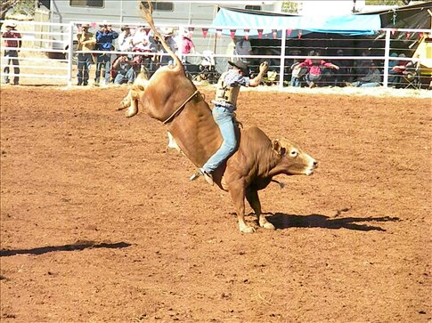 The perfect bull riding shot - Quamby Rodeo 2009