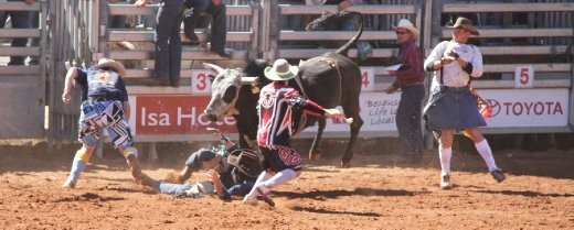 All action in the arena