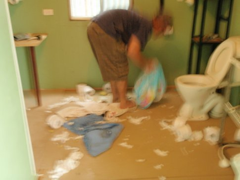 This is what happens when a puupy gets into the toilet paper !