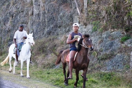 Horse - an excellent way to get around Fiji. The man in the back is using a machete, presumably to save on reins. Or to lead a new coup perhaps?