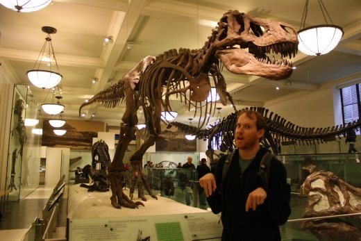 The other bits of a T-Rex and also its head.