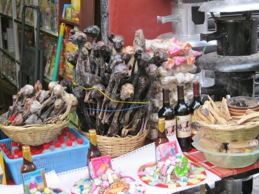 Everything set for that romantic dinner: bottle of wine - check. Lollies - check. Picnic basket - check. Llama faetuses - check. More witches market fun.