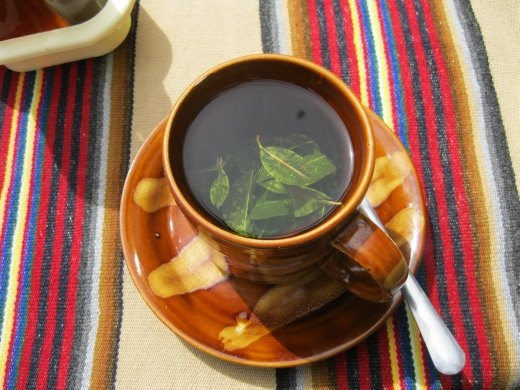 Coca tea: the locals claim it'll cure pretty much anything. Definitely helps a bit with altitude sickness. Or for making cocaine.