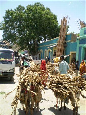 Dire Dawa, east Ethiopia
