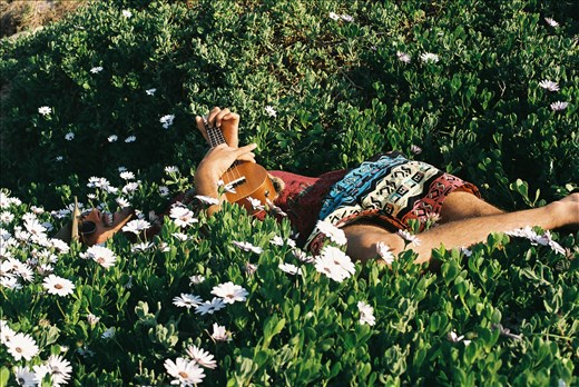 Dustin in the daisies