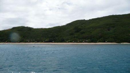 Octopus Resort, here at last.
