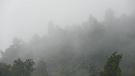 And the RAIN kept falling