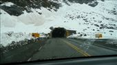 The start of the 'Homer' tunnel: by em-and-andy, Views[262]