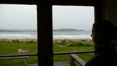 The view from our Curio Bay Backpackers room, through the Patio doors.