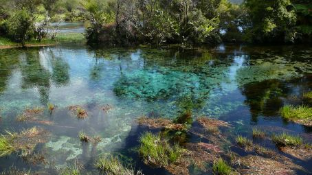 The clearest Springs in the world, so told?  Pupu Springs North of Takaka