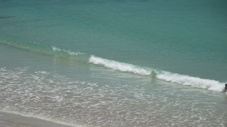 Look how clear the Sea is