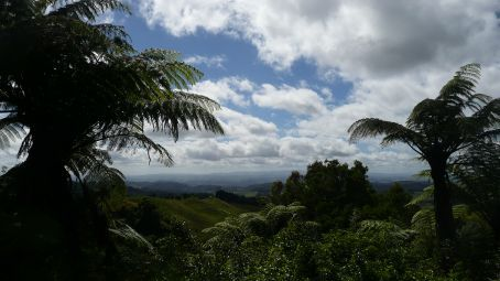 The view on the way to New Plymouth