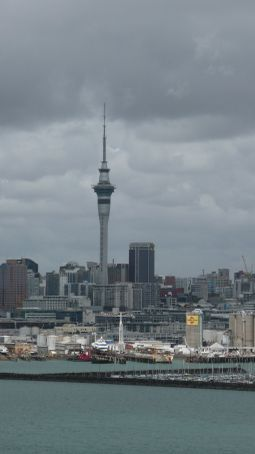 Driving through Auckland
