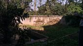 Back yard at the house in Tangshan: by emacinat, Views[219]