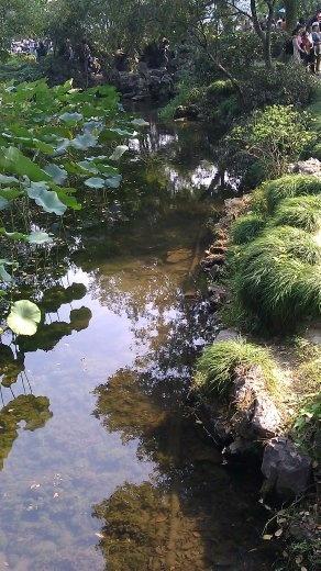 Humble Administrator's Garden - Stream