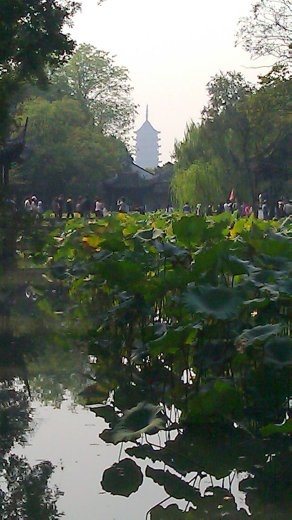 Humble Administrator's Garden - View of Pagoda from Men's Reception Area
