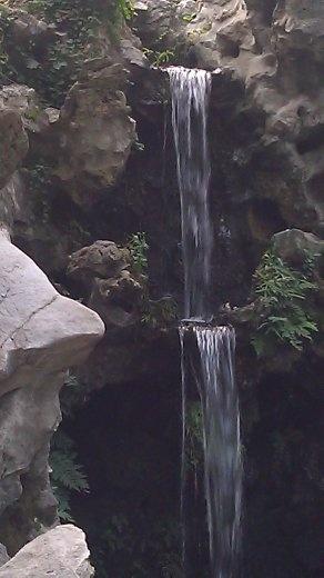 Lion Grove - Waterfall
