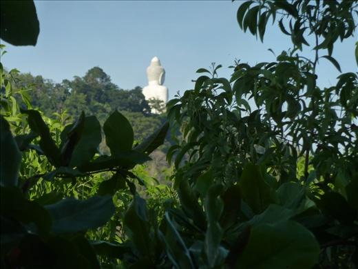 Gros buddha au haut de la colline!
