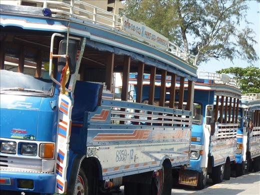 Autobus publique