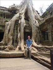 Ted en train de se faire envahir par les racines!!!! Non mais elles poussent dans la pierre ces racines...c'est fou!!!: by emilpeace, Views[97]