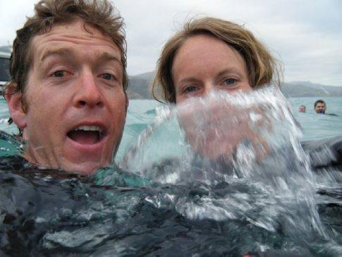 Splash, splash! Looking for dolphins