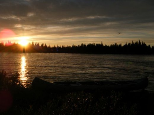 Midnight sun ... (no, that's not a bird, that's a mosquito !)