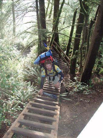 One of the many vertical ladders along the trail
