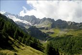 Cima Piazzi glacier in the alps in Northern Italy has decreased in area by 21%: by emmajane, Views[1046]