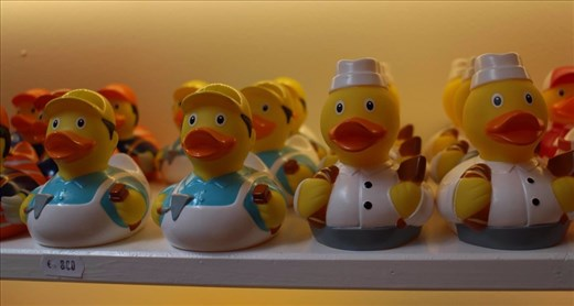 The Amsterdam Duck Store. - one for just about every possible profession! The store owner appreciated my asking permission to take photos.